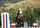 1990 Hurstbridge Showjumping